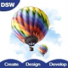 DSW - Design & Solutions web logo