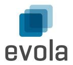 Evola GmbH - Javascript freelancer Basilea